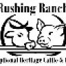 Rushing Ranch